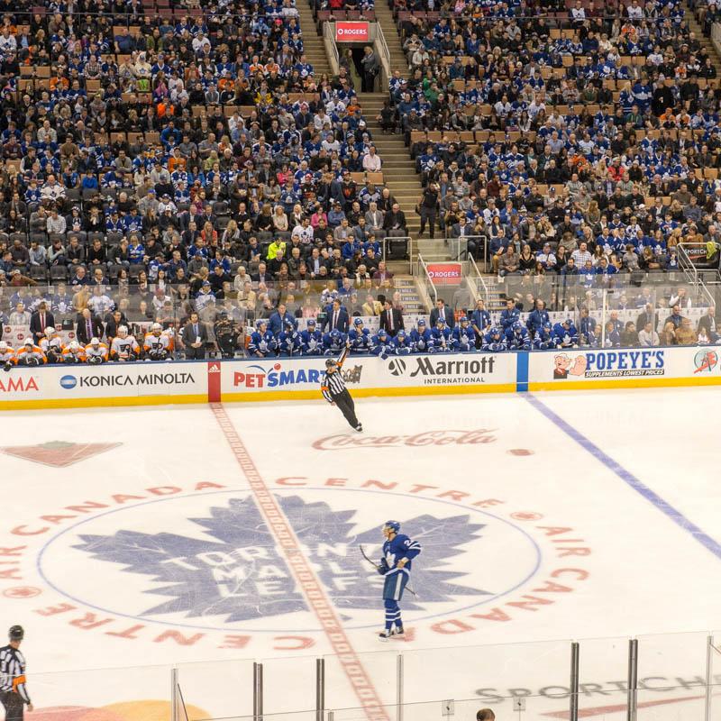 Toronto Maple Leafs Ice
