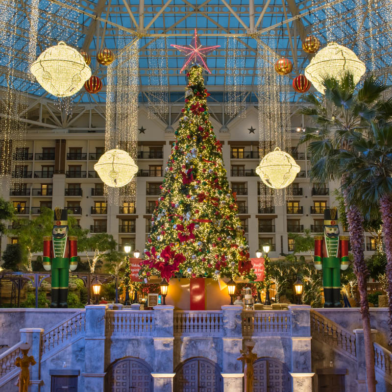 experience a charlie brown christmas with the family at ice 2 night stay at gaylord national - Charlie Brown Christmas Tree For Sale