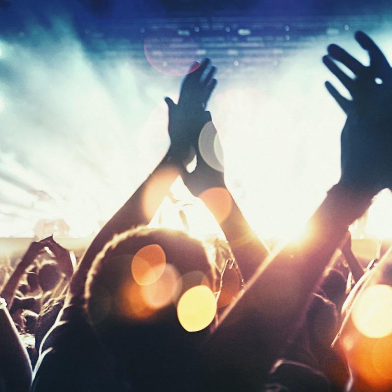 ConcertFans