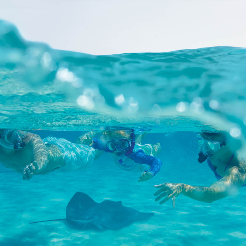 Discover the Ocean with Jean-Michel Cousteau & Stay at The Ritz-Carlton, Grand Cayman