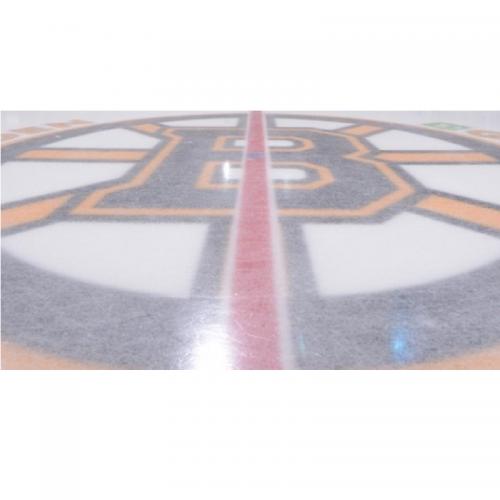 boston bruins logo